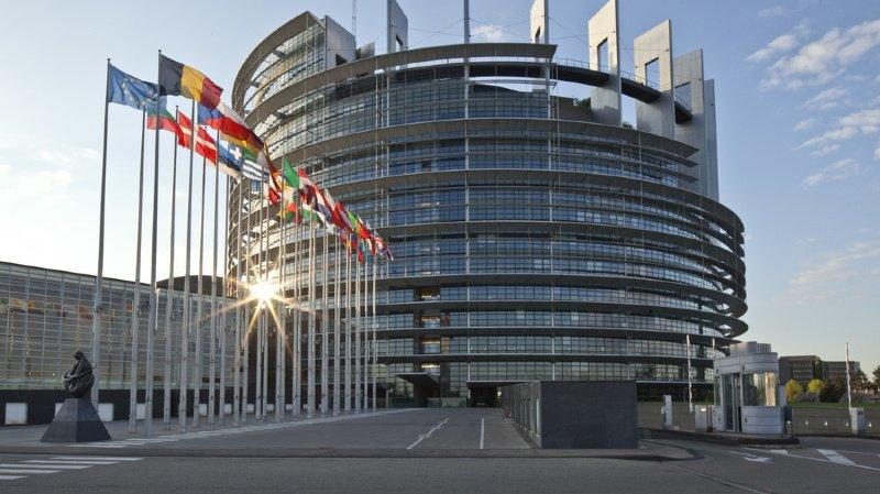 Consommation: le Parlement européen se positionne sur les appellations de nourriture végan