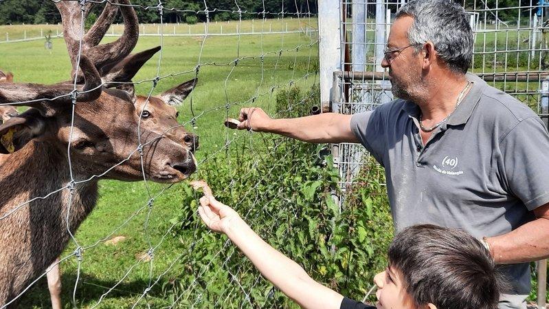 La famille Sunier, à Enges, élève des cerfs depuis 2011. Une production labellisée.