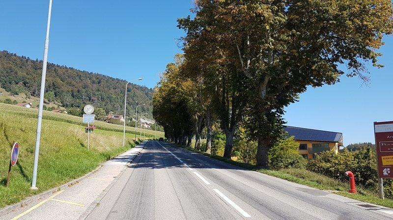 Rochefort: route fermée dès lundi pour élagage
