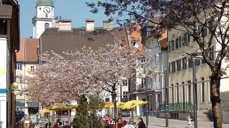 La Chaux-de-Fonds: les cerisiers de la place de la Carmagnole déménagent