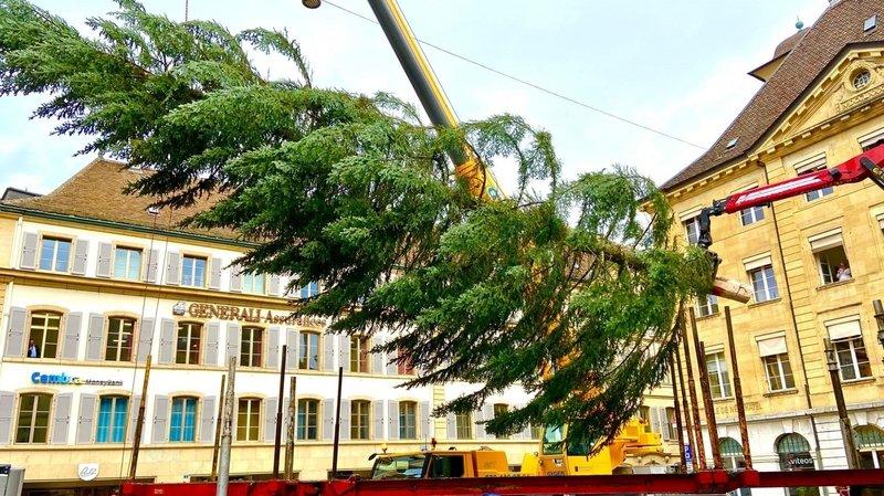 Le grand sapin de Noël a été installé à Neuchâtel