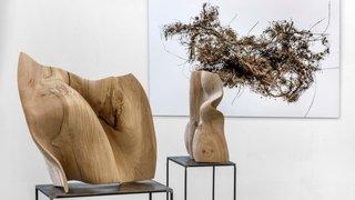 Colombier: la galerie Numaga présente Nele Gesa Stürler et Mario Del Curto, deux artistes qui explorent le cœur du vivant