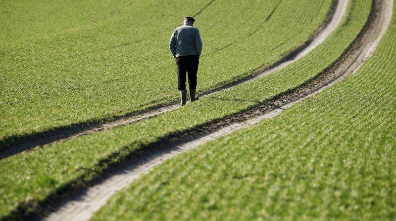 Agriculture: face au suicide, il faut briser le tabou