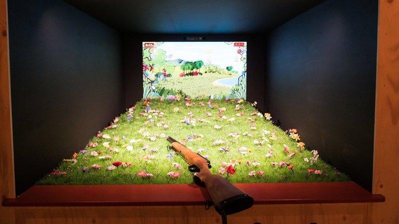 Le Muséum d'histoire naturelle de Neuchâtel se la joue sauvage