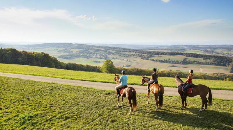"""Le projet """"Tous en selle"""" offre une balade gratuite à cheval aux personnes séjournant au moins deux jours dans le Jura, de début mai à fin octobre."""