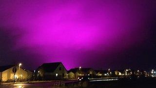 Suède: un ciel vire au violet à cause d'un champ de tomates