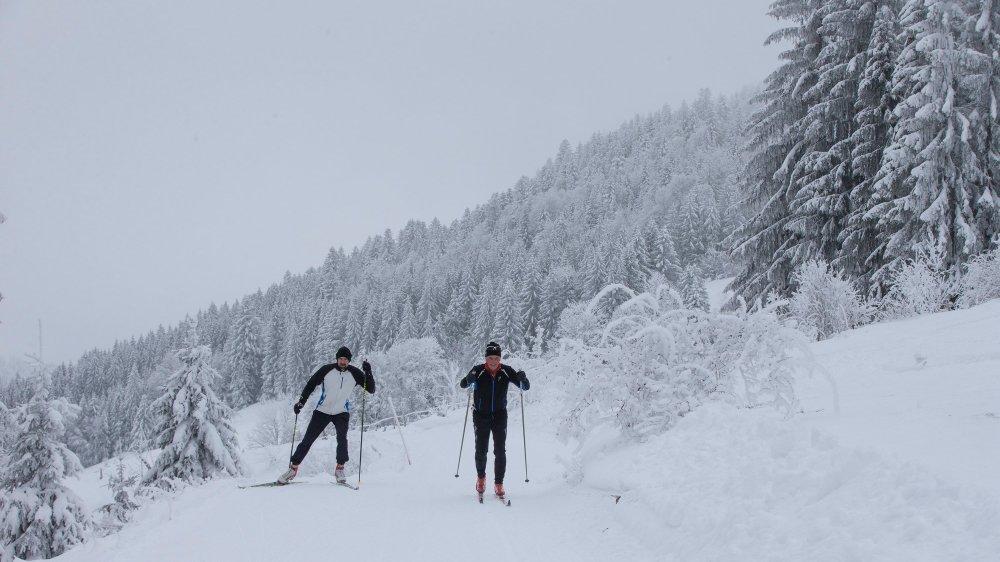 Sur les pistes de ski de fond de la Grande traversée du Jura, côté français, près du Vieux Chateleu.