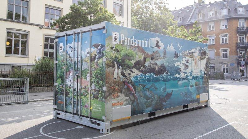 La Pandamobile du WWF fera plusieurs haltes dans le canton de Neuchâtel, jusqu'à fin février.