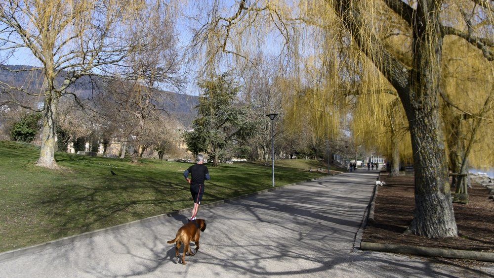 Les nouveaux propriétaires de chiens devront suivre des cours, notamment en ville. Ici sur les Jeunes-Rives, à Neuchâtel.