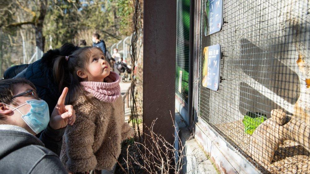 Devant les volières du Bois du Petit-Château, les enfants ont pu retrouver perroquets et perruches.  La Chaux-de-Fonds, le 1er mars 2021 Photo: Lucas Vuitel