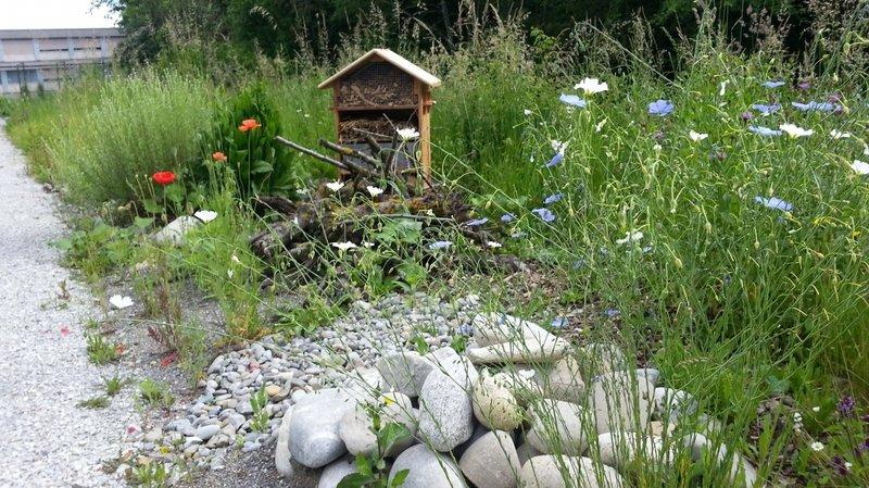 Bien aménager son jardin grâce au Parc Chasseral