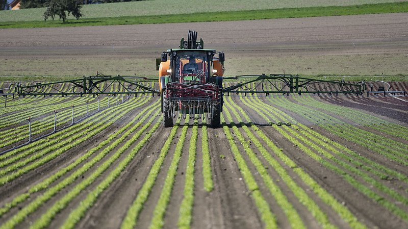 Initiatives anti-pesticides: pour le camp du oui, les textes sont favorables aux paysans et aux consommateurs
