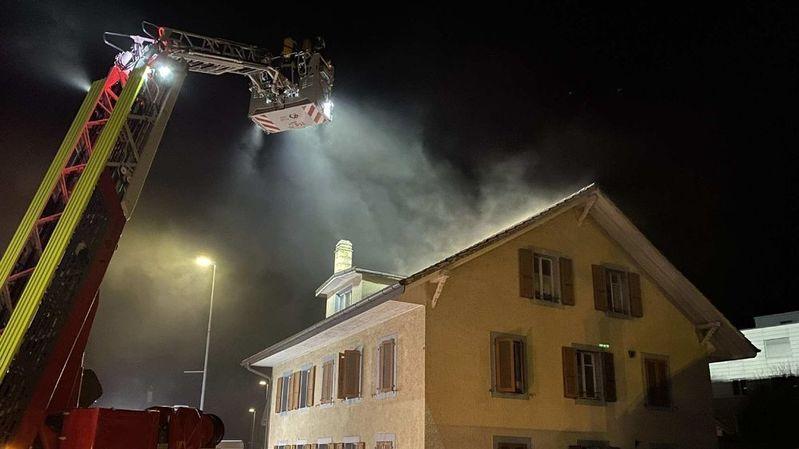 Trois chats périssent dans un incendie à Marly (FR)