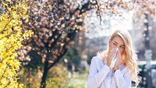 Allergies et intolérances: 5 questions sur un mal qui touche toujours plus de Suisses