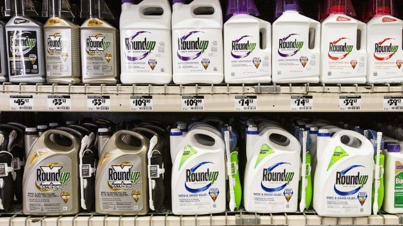 Etats-Unis: condamnation de Monsanto confirmée lors du procès sur le Roundup