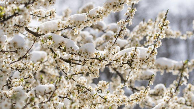 Météo: après un week-end doux, la semaine s'annonce glaciale en Suisse