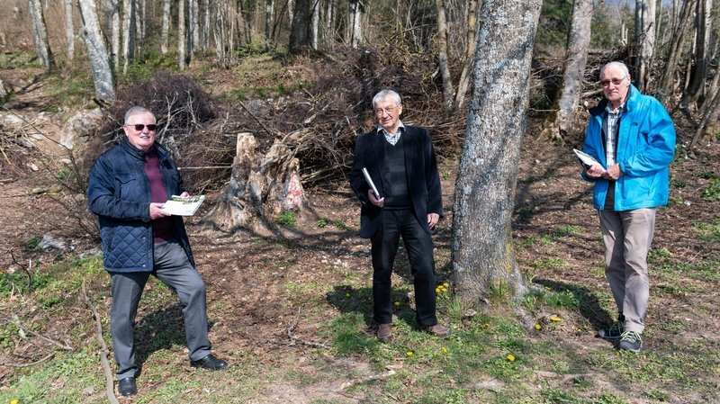 La Nouvelle revue neuchâteloise dépeint nos forêts comme «un patrimoine d'avenir»