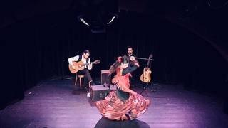 Noche Flamenca avec Oyaki Flamenco Trio