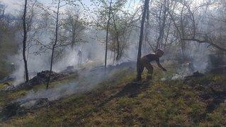 Danger marqué d'incendie de forêt sur le Littoral