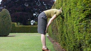 Quelle clôture installer dans son jardin? 4 propositions pour tous les budgets