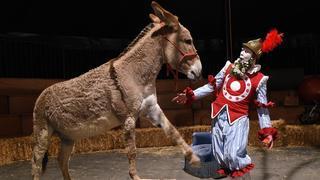 Cernier: 13 spectacles, 4 lieux et 36 représentations pour Poésie en arrosoir