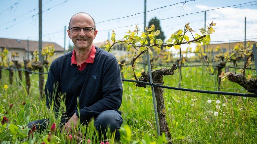 Le viticulteur Alain Gerber dans ses vignes, à Hauterive.