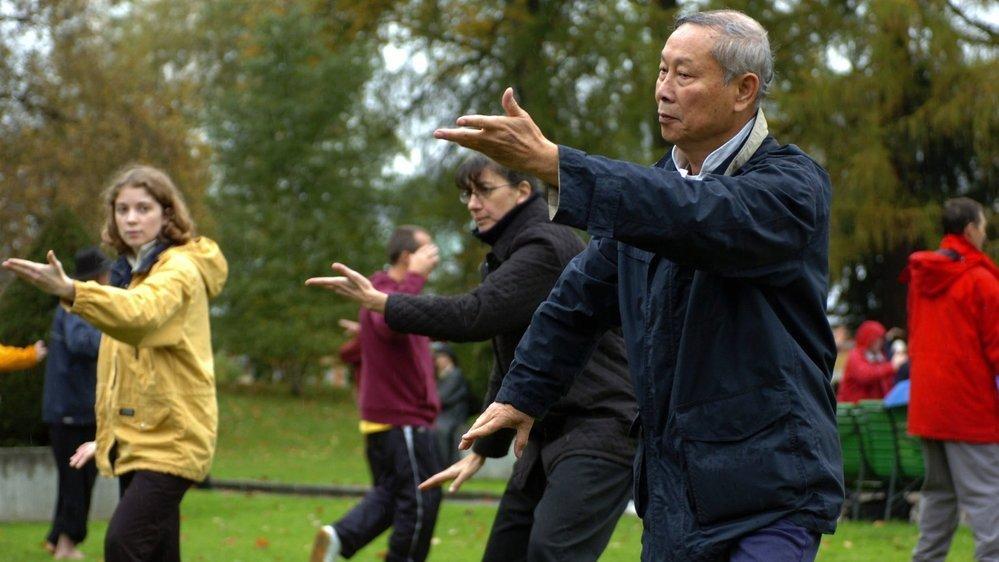 Le Qi Gong est basé sur des exercices doux qui travaillent sur la circulation de l'énergie vitale, associant mouvements lents, exercices respiratoires et concentration.