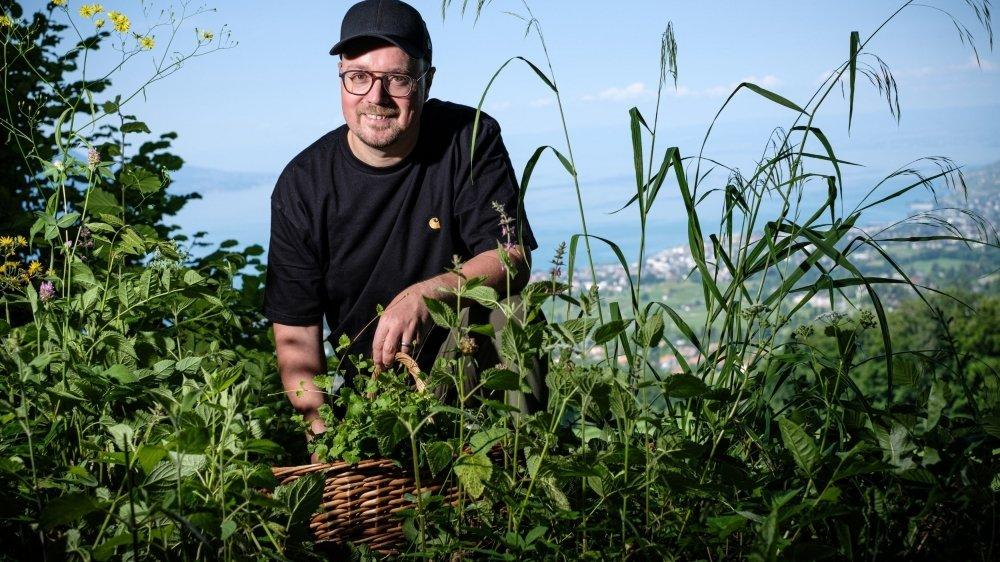 Si Anne-Marie Maillard fournit la majeure partie des plantes sauvages que Stéphane Décotterd utilise dans sa cuisine, dès qu'il a un peu de temps, le chef du Pont de Brent apprécie de partir à la cueillette.