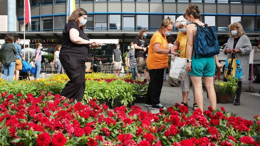 La distribution de fleurs a connu un joli succès ce samedi matin.