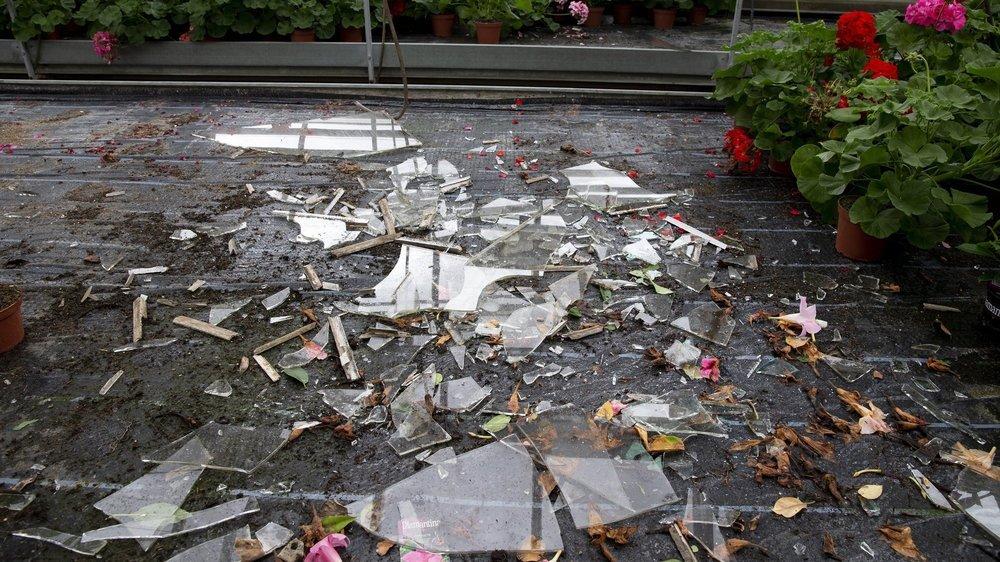 Les serres communales de la rue de la Pâquerette ont été sérieusement endommagées par la grêle.
