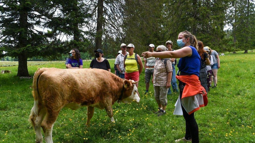 Myriam Maridor, agricultrice près de La Vue-des-Alpes, a tout fait pour dissiper les craintes des randonneurs. Photo: Christian Galley