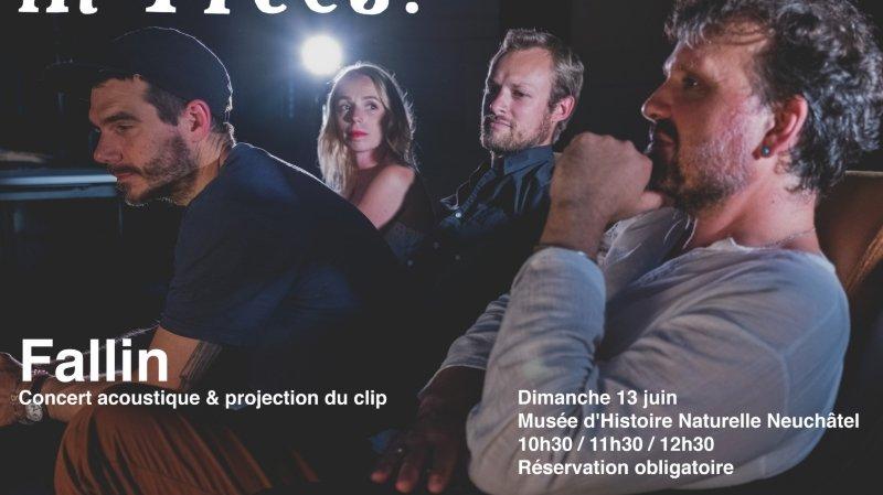 in Trees - Concert acoustique et projection