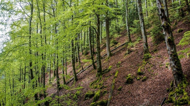 Neuchâtel ne rejoindra pas le Parc Chasseral