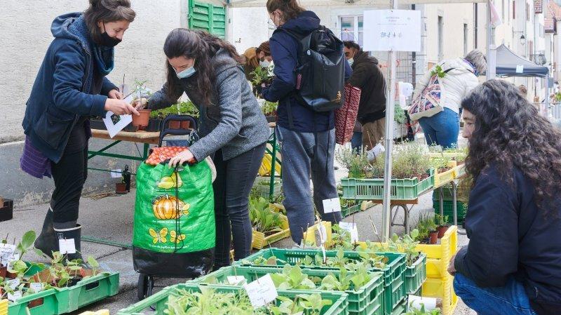 La Chaux-de-Fonds: le Marché de printemps a attiré les férus de jardinage
