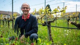 Alain Gerber, viticulteur en conversion bio à Hauterive: «On tape sur le maillon faible»