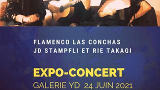 Flamenco Las Conchas