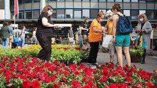 Montagnes: des fleurs gratuites pour célébrer le patrimoine
