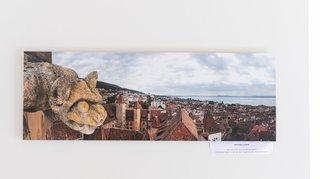 Une expo dévoile les dessous des gargouilles de la collégiale de Neuchâtel