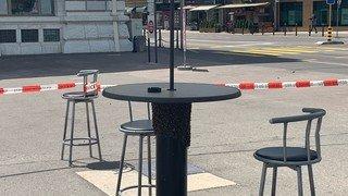 3000 abeilles envahissent la terrasse du bar Couleur café
