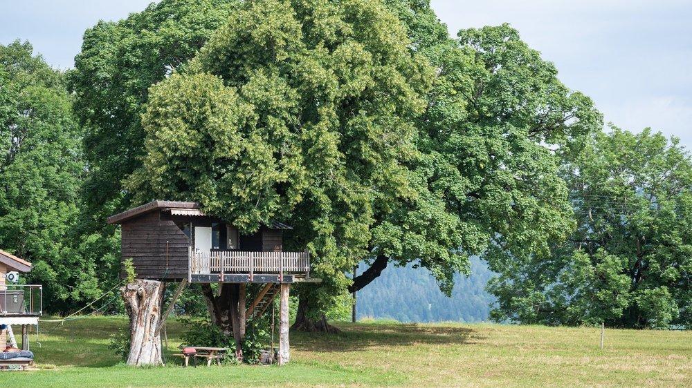 Une cabane dans les arbres, en pleine nature dans le pays de l'absinthe.