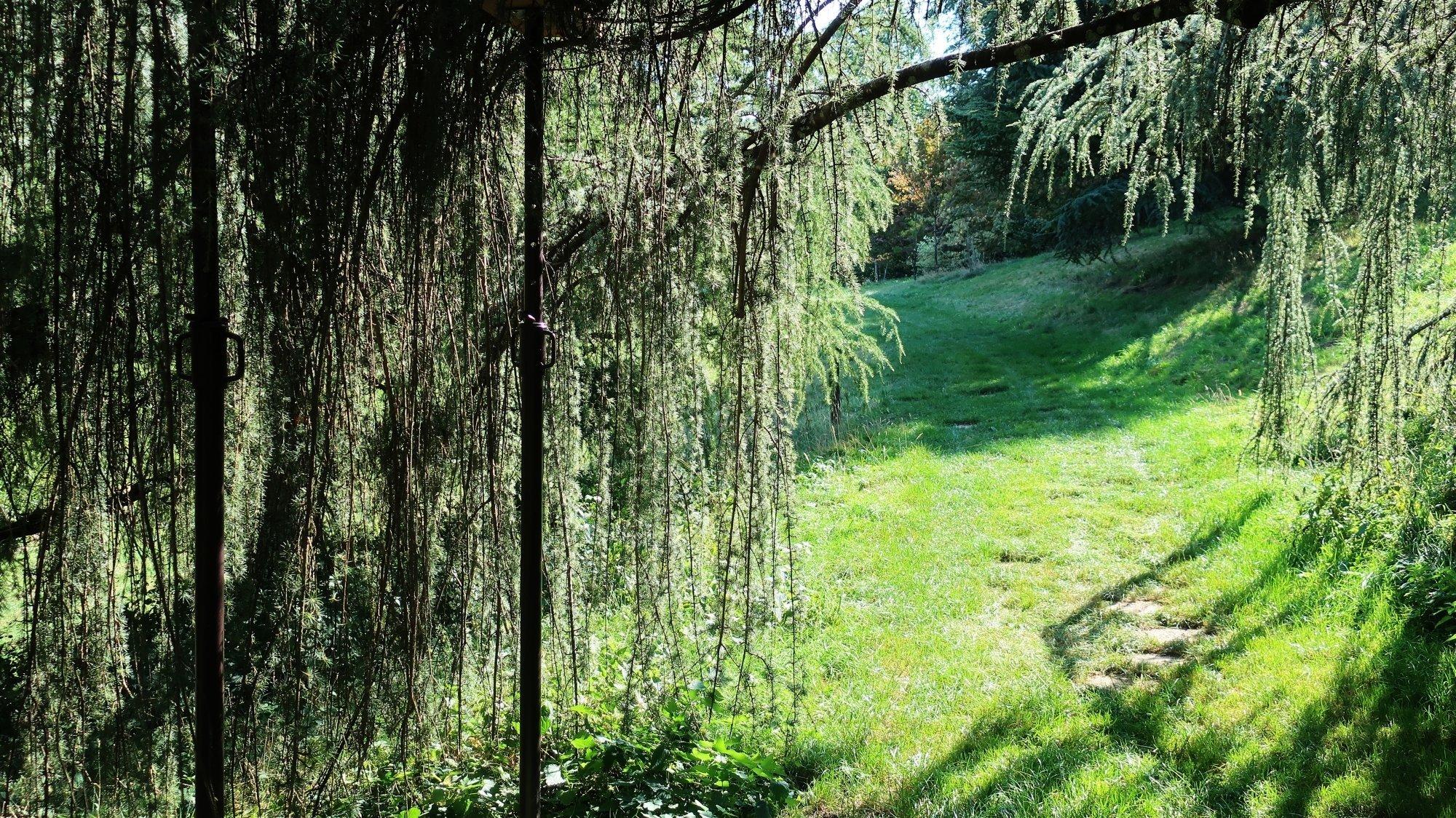 L'Arboretum, un vaste espace propice à la détente et à la randonnée.
