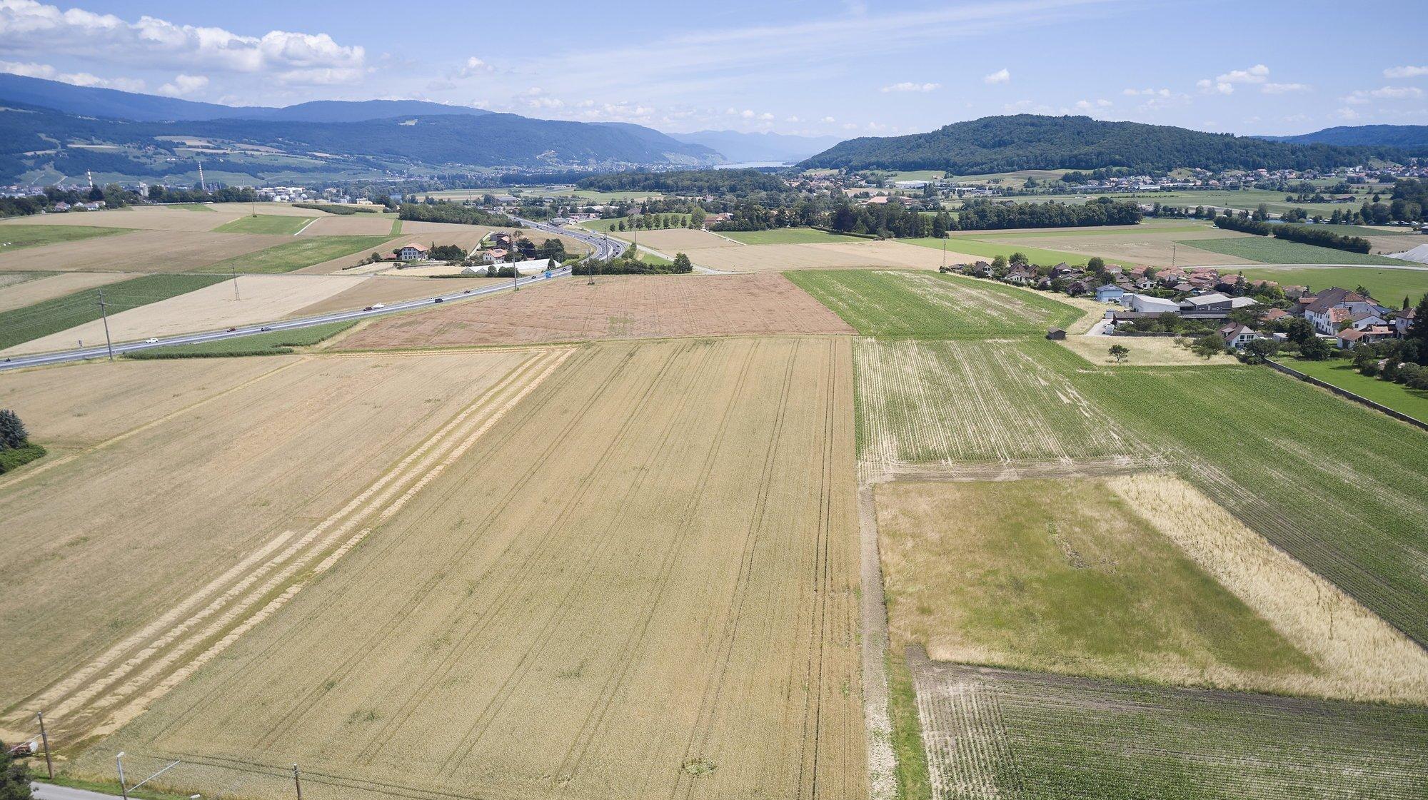 Le projet du gouvernement prévoit, à terme, la transformation de près de 24 hectares de terres agricoles en un écoquartier et une zone industrielle.