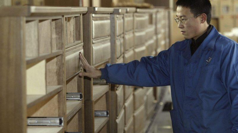 La Chine dévore la production de bois et bouleverse le marché