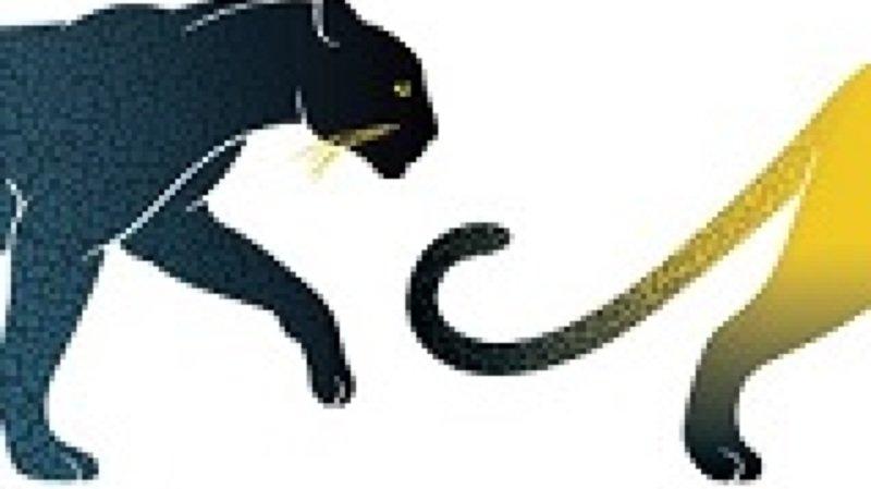 Lion, tigre, guépard et compagnie