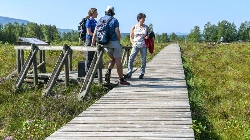 En visite aux tourbières des Ponts-de-Martel