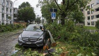 Intempéries: chutes d'arbres, cours d'eau qui débordent, la Suisse est sous l'eau