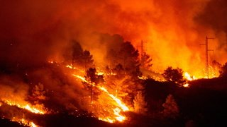 Glissements de terrain en Inde, incendie en Espagne, manif contre les JO: la galerie photos du 23 juillet 2021