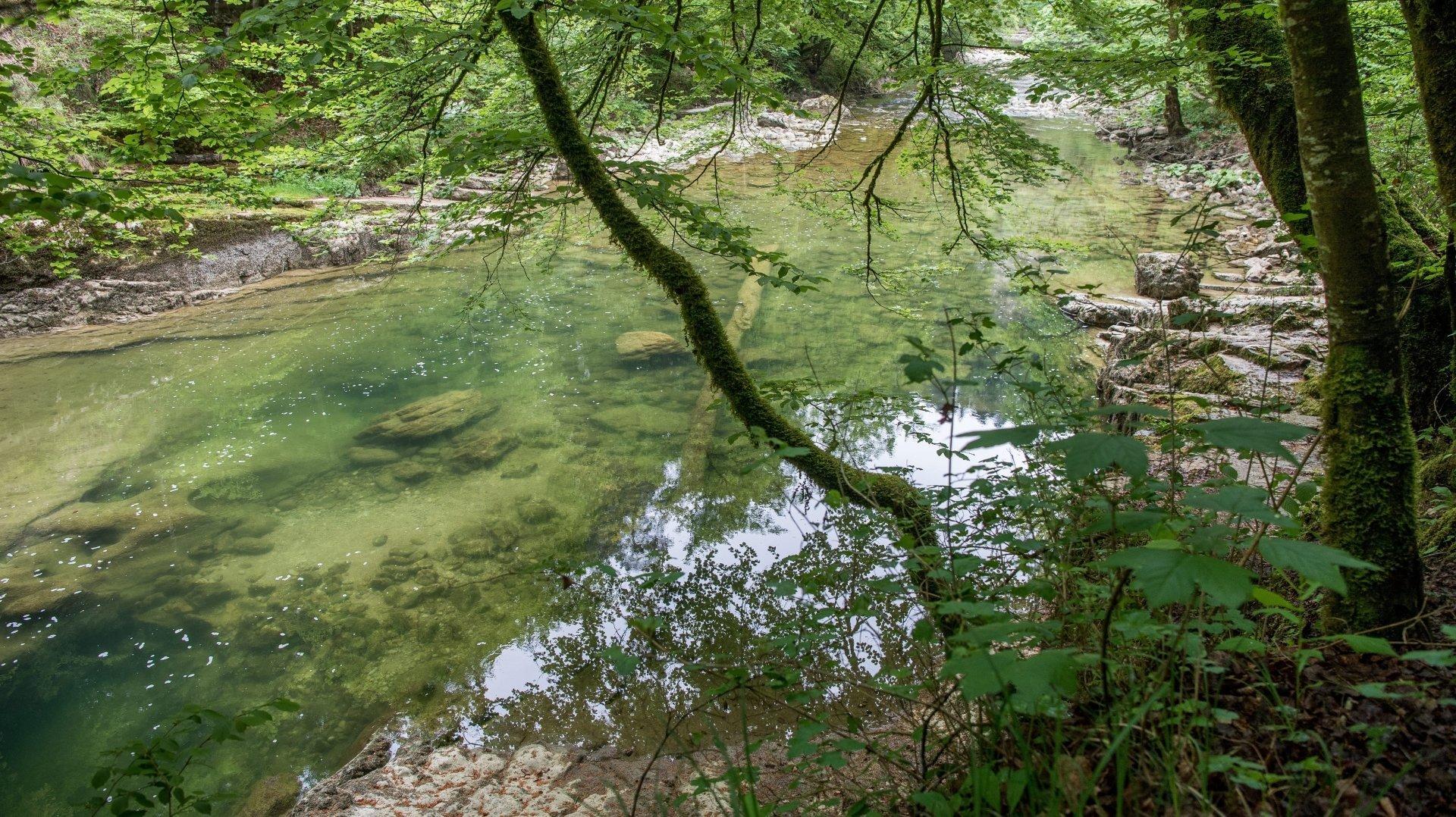 Pro Natura Neuchâtel veut protéger les rivières de Suisse… et de Bosnie