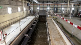 Crues: des eaux usées dans le lac de Neuchâtel mais (presque) pas de pollution
