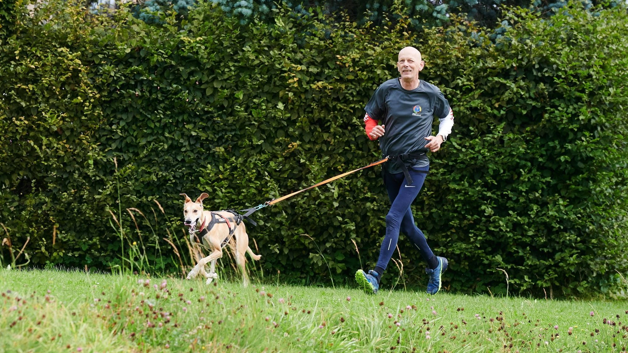 Daniel Koch dans sa démonstration de canicross avec sa chienne Bundji lors des Family Games.